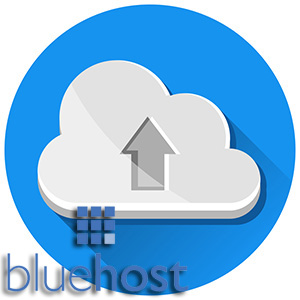 Bluehost Review - Uptime